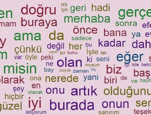 Türkçe başarısı hayat başarısı ile doğru orantılıdır.
